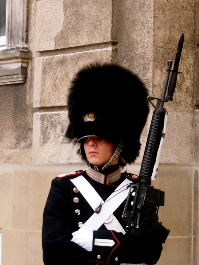 A Royal Guard